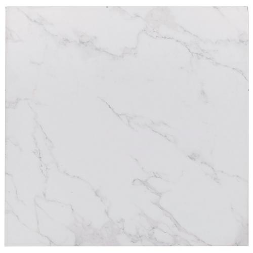 Carrara Porcelain